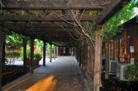 Camellia-Courtyard-inside2.jpg